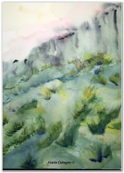 Ginestre Etnee - Acquerello - cm.21x30 - carta 300 gr.